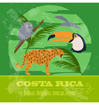 Costa Rica national symbols Dolphins jaguar toucan vector image