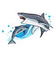 dolphin and shark funny cartoon and vector image