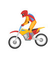 motorcyclist on motorbike motocross racing vector image vector image