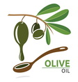 Olive1 vector image vector image