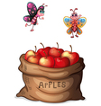 A sack of crunchy apples vector image vector image