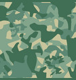 camouflage pattern back vector image