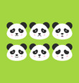 emotional panda faces vector image vector image
