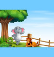 happy a elephant and lion on hill vector image vector image