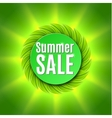 Summer sale with fresh green leaf vector image vector image