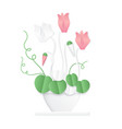 trendy volumetric paper cuted style cyclamen vector image vector image