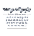 vintage calligraphy hand drawn outline alphabet vector image