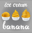 yellow set of ice cream scoops poster design with vector image vector image