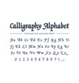 calligraphy alphabet universal handwritten bold vector image