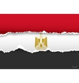 design flag egypt from torn papers with shadows vector image vector image