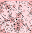 japanese sakura branch and blossoming flowers vector image vector image