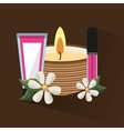 natural spa center icons vector image