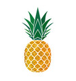 pineapple golden with green leaf tropical gold vector image vector image