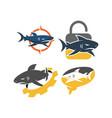 shark lock gear brain logo design set vector image vector image