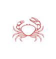 tasmanian giant crab vector image