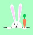 white easter rabbit easter bunny vector image