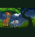 a giraffe and elephant in forest night vector image vector image