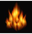 bonfire vector image vector image