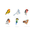 colorful stylized birds collection western vector image vector image