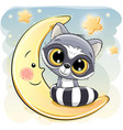 cute raccoon is sitting on the moon vector image vector image