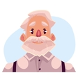 Grey haired old man face neutral facial vector image vector image