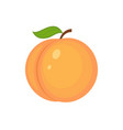 guicy peach fruit whith green leaf vector image