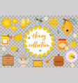 honey collection beekeeping set objects vector image vector image
