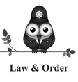 Law and Order UK vector image vector image