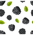 realistic detailed 3d blackberries with green vector image