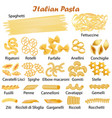 set of kinds of italian pasta vector image vector image