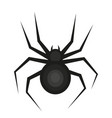 spider icon is a flat style isolated on white vector image