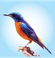 bird 1 silhouettes vector image vector image