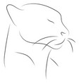 black line cat head on white background hand vector image vector image