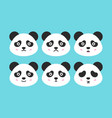 flat panda faces vector image