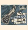 guitar harp rare musical instrument vector image vector image