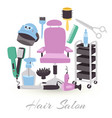 hairdresser equipment tools fashion vector image