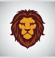 lion head mascot logo template vector image vector image
