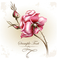 Rose flower vector image
