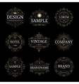 Set of vintage luxury logo templates vector image vector image
