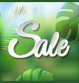summer tropical banner vector image vector image