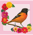 bird flower silhouettes vector image vector image