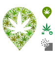 cannabis map marker collage of cannabis vector image