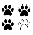 collection of bear tiger dog and cat paw vector image