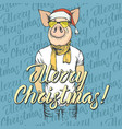pig christmas and new year concept vector image vector image