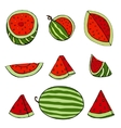 Set of watermelon vector image