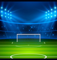 soccer stadium football arena field with goal vector image
