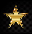star frame shining banner isolated on vector image vector image