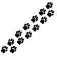 traces animals track vector image