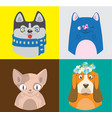 colorful cartoon cats and dogs collection vector image