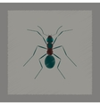 flat shading style cartoon ant vector image